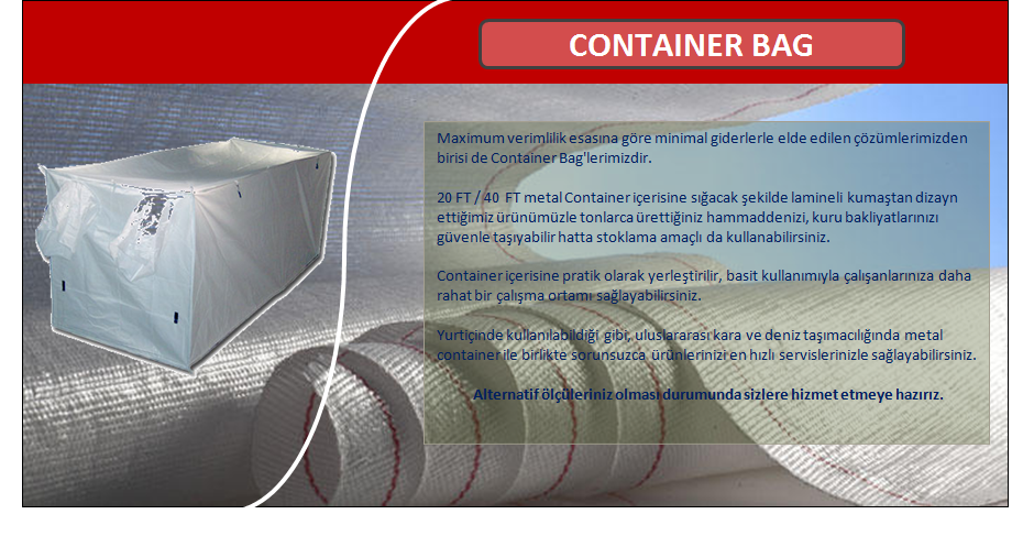 container-bag